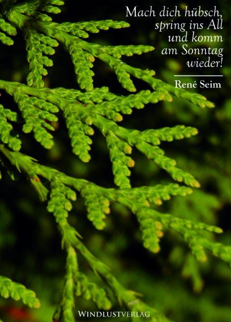 """René Seim - """"Mach dich hübsch, spring ins All und komm am Sonntag wieder!"""" Lyrikbuch"""