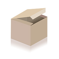 The Immortal Lee County Killers - The Essential Fucked Up Blues! LP (used)