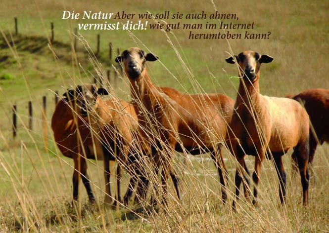 Die Natur vermisst dich - Postkarte
