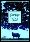 """Postkarte """"Was dir gelang, gelang dir gut"""" René Seim"""